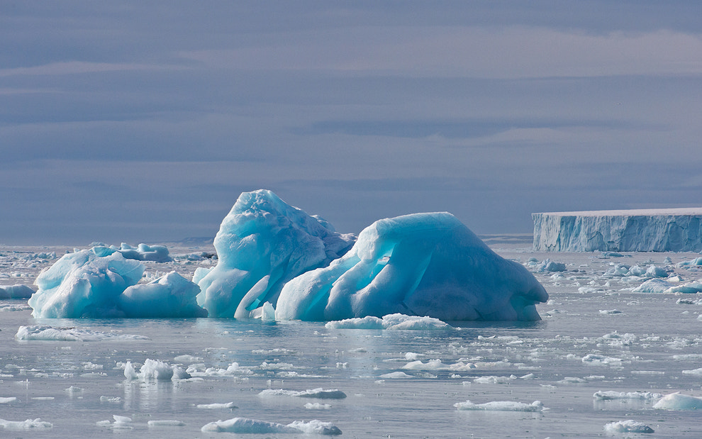 Photograph Blue Bergs by Mike Reyfman on 500px