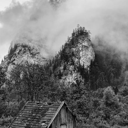 Austrian Wilderness