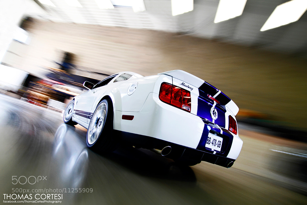 Photograph Shelby GT500 by Thomas Cortesi on 500px