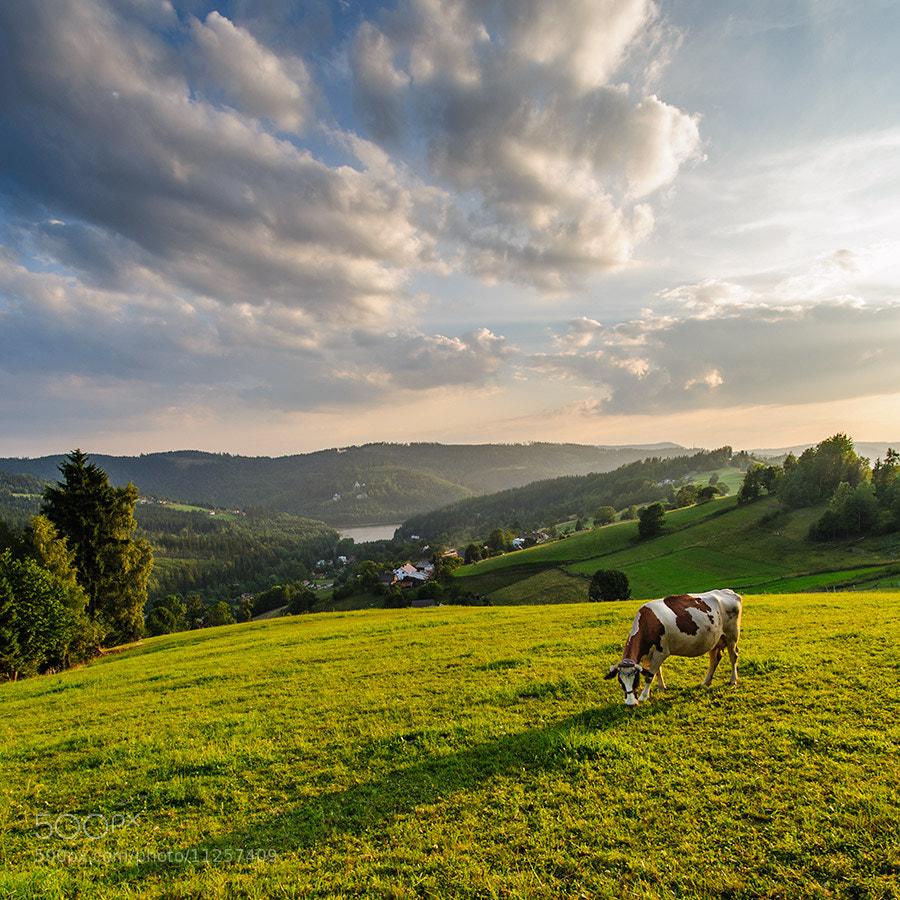 Photograph Beskidy - Poland by Sebastian Zebrowski on 500px