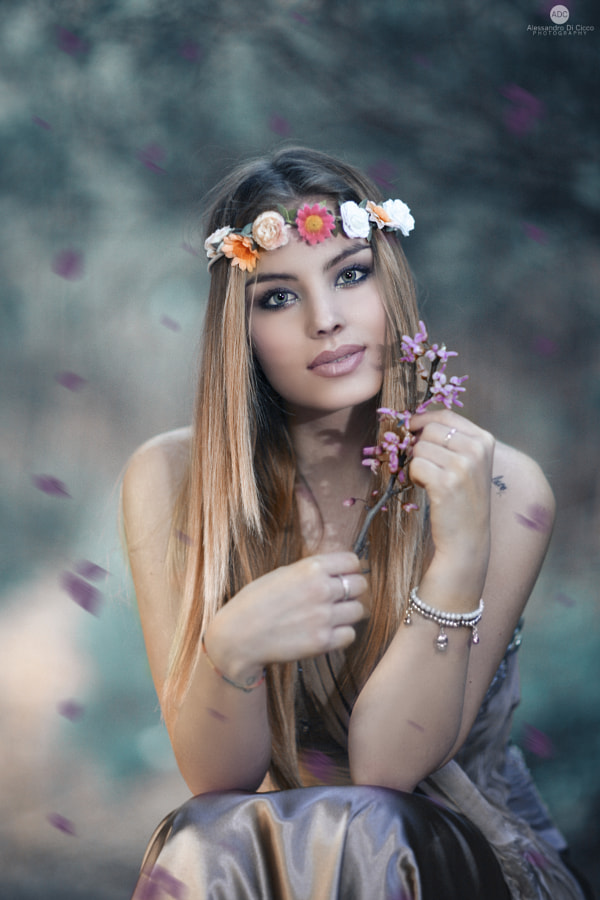The windy violets by Alessandro Di Cicco on 500px.com