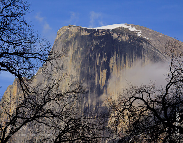 Photograph Half Dome Striations by Michael Flaherty on 500px