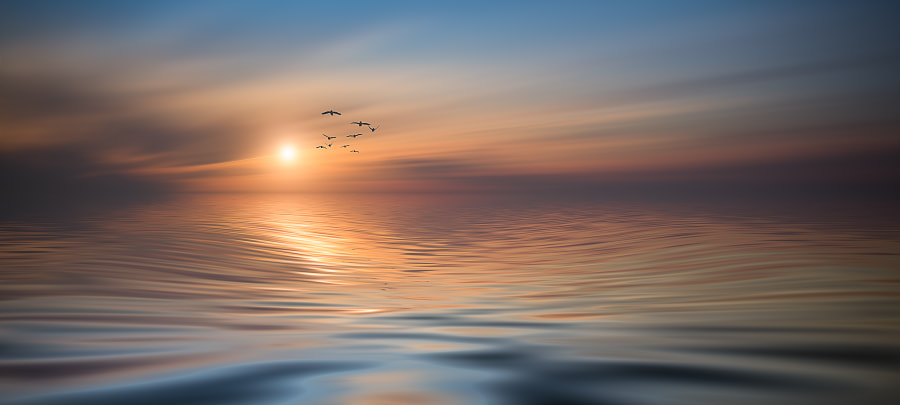 Photograph ~CARPE DIEM ~ by Christian Wig on 500px