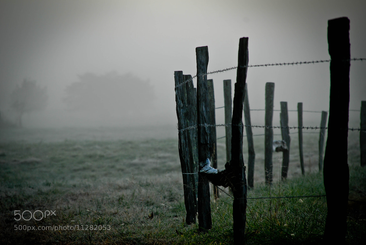 Photograph Fence in Mist by Les Carlton on 500px