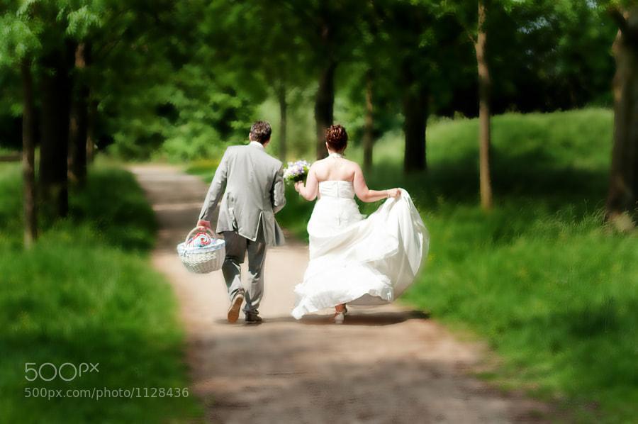 Bride and groom walking in a park in Culemborg, Gelderland (Netherlands)