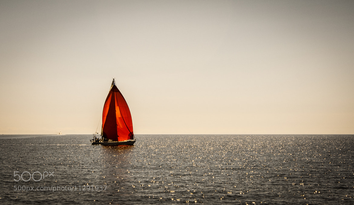 Photograph Red Sails On The Sea by Shaun Groenesteyn on 500px
