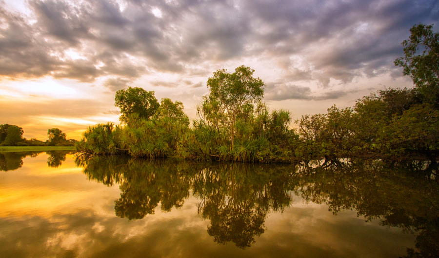Yellow Water, Kakadu by Margaret Morgan on 500px.com
