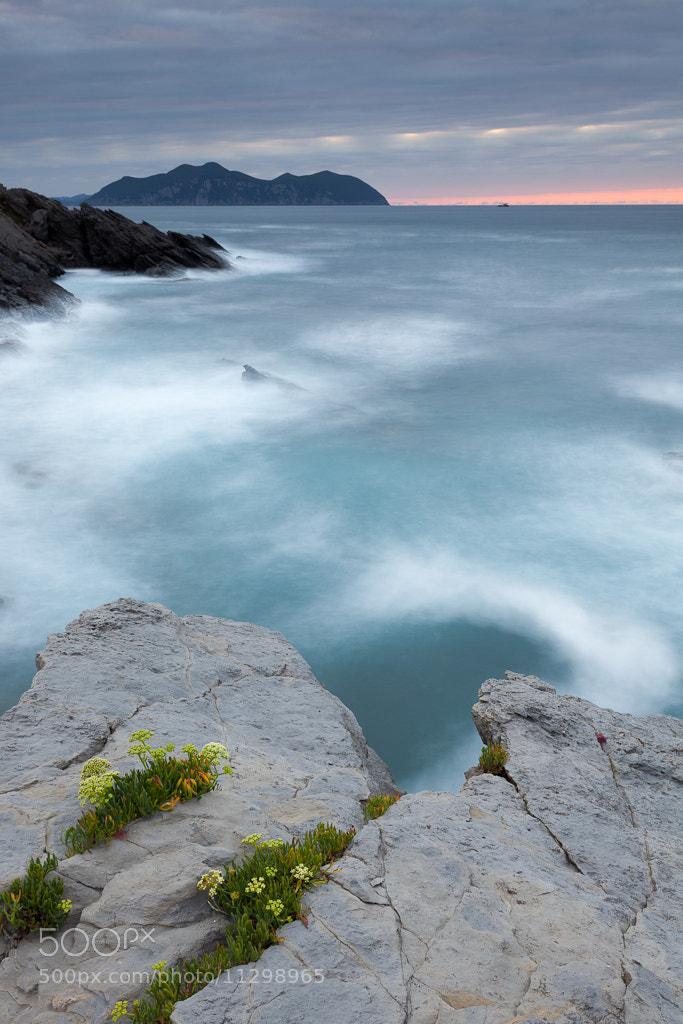 Photograph Balcón florido by Andoni Lamborena on 500px