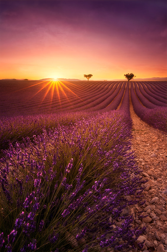 Photograph One day in Provence by Julien Delaval on 500px