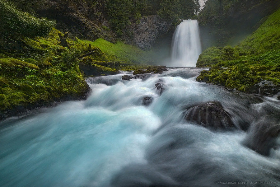 Soaking It In by Candace Bartlett on 500px.com