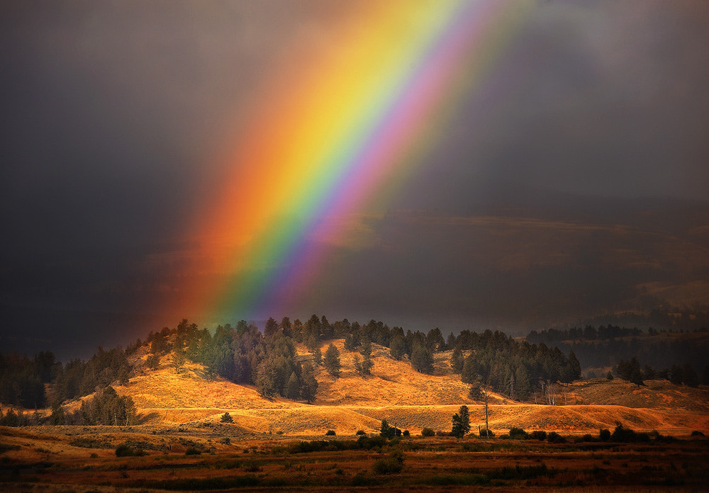 Photograph Yellowstone Rainbow by Steve Perry on 500px