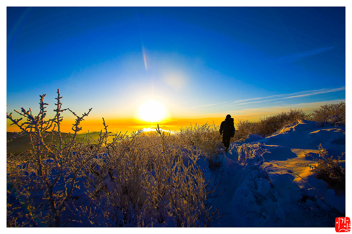 Photograph Walk with the sun by Lee Kyeong Hwan on 500px