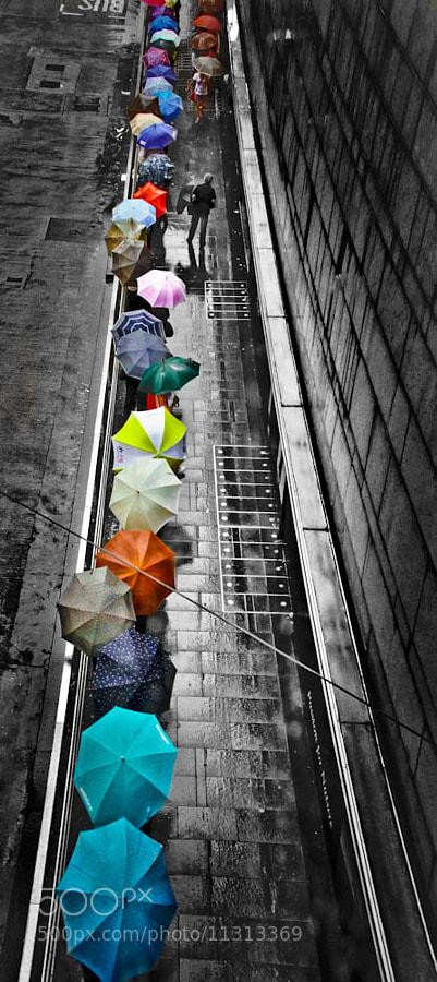 Photograph Rainy days  by Albert Hui on 500px