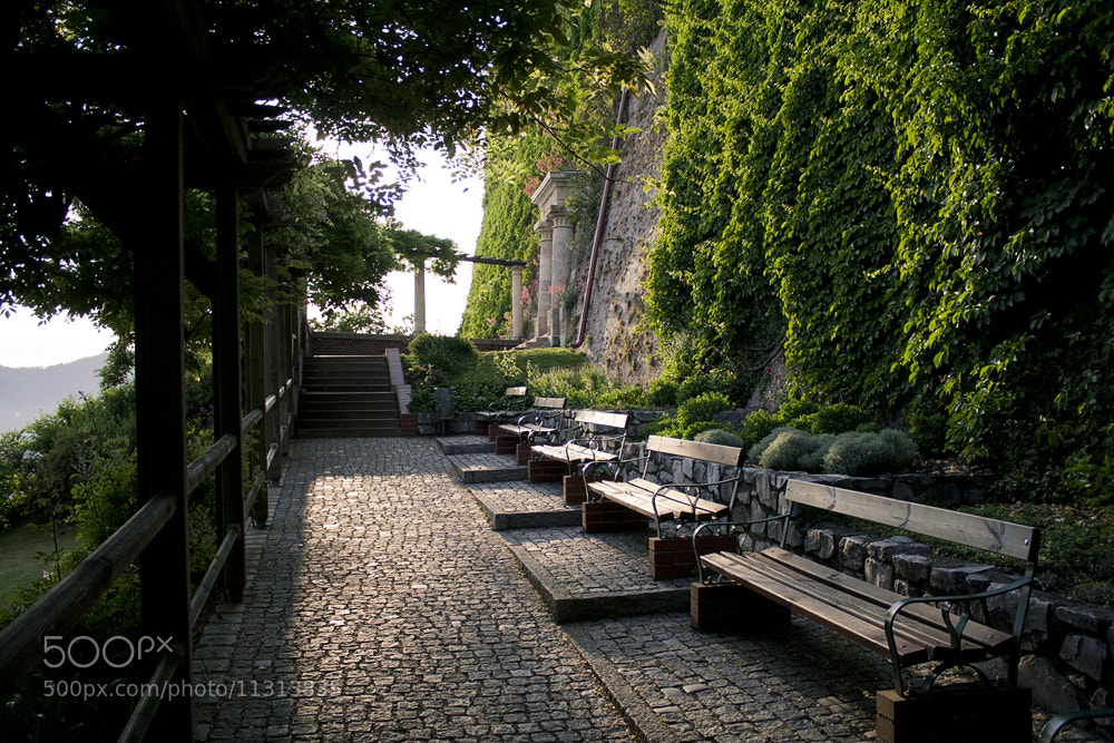 Photograph At Schlossberg park by Victoria Khinevich on 500px