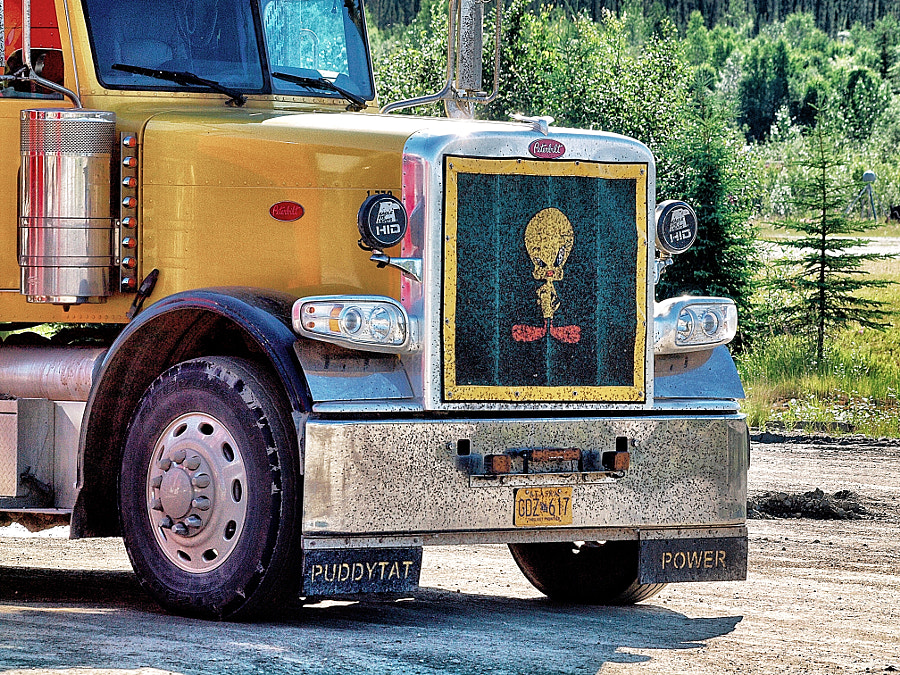 Photograph Tweety Bird Truck (Coldfoot, Alaska 2013) by Nancy Lundebjerg on 500px