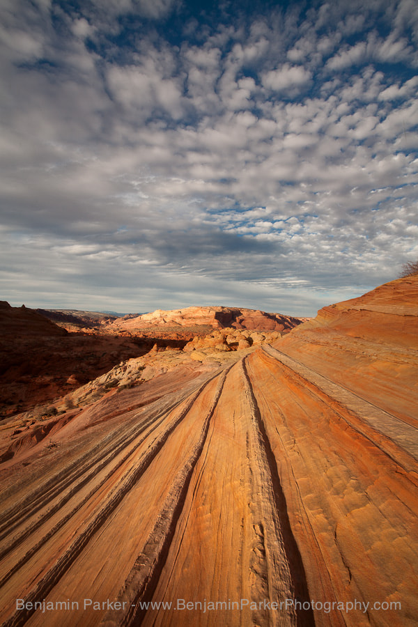 Photograph Coyote Buttes Landscape by Benjamin Parker on 500px
