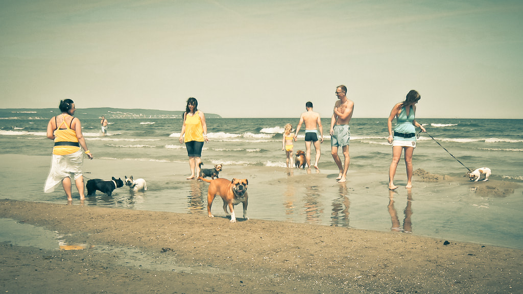 Photograph Hundestrand by Christer Lindh on 500px