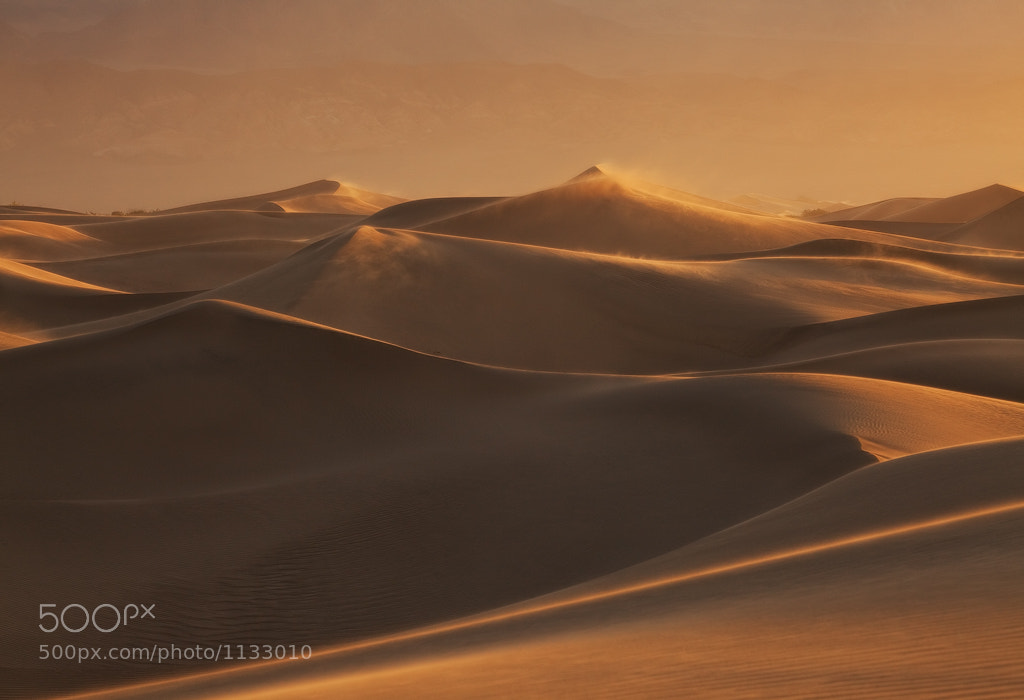 Photograph Dune Wonderland 2 by David Thompson on 500px