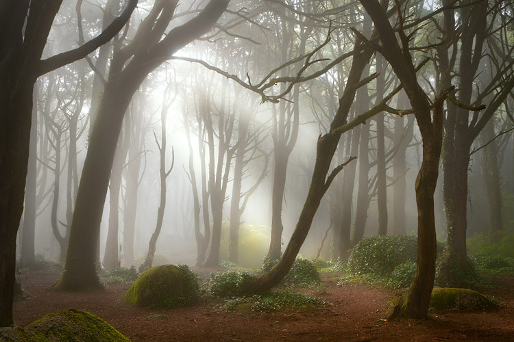 Photograph Lost Throne by Pedro Santos on 500px