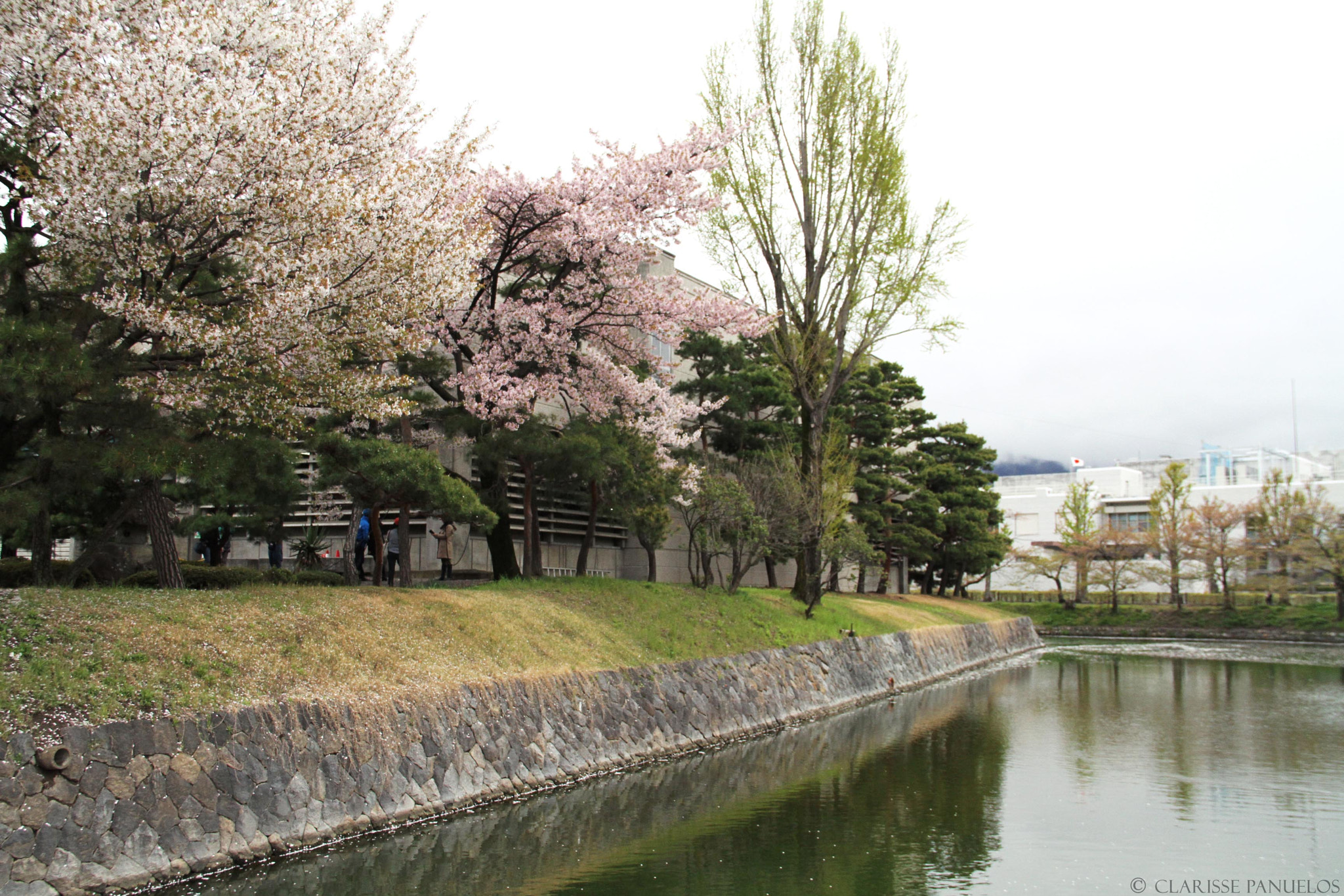 8367995810c69dd83e831d83a6087d72 - Japan Travel Blog April 2015: Matsumoto Castle
