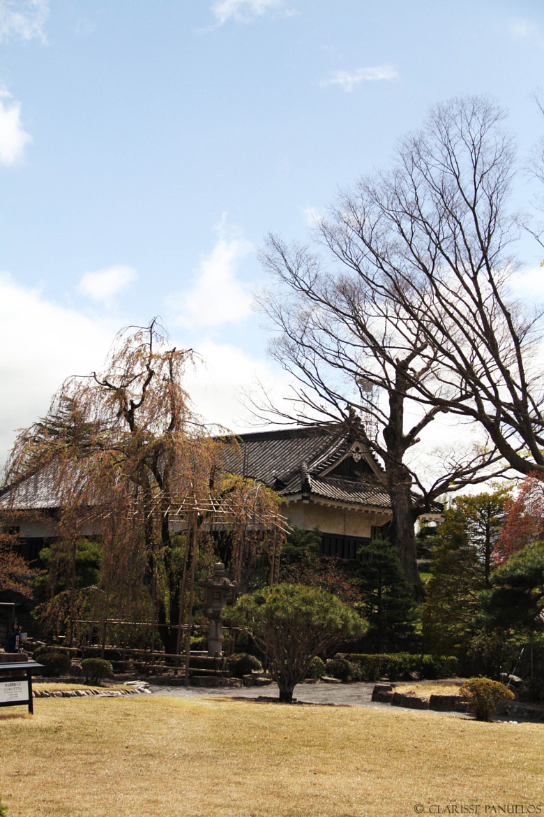 656c51e36184d73bbbfb2c1befe2e6b8 - Japan Travel Blog April 2015: Matsumoto Castle