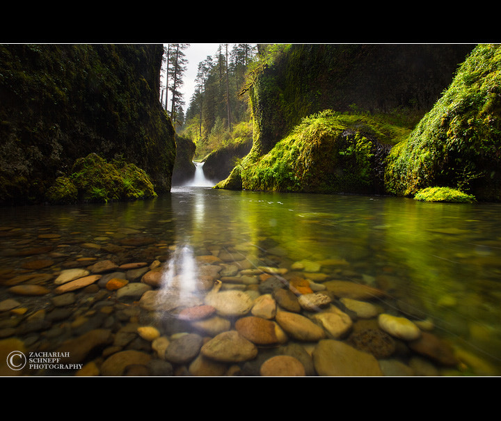Photograph Punchbowl Falls by Zack Schnepf on 500px