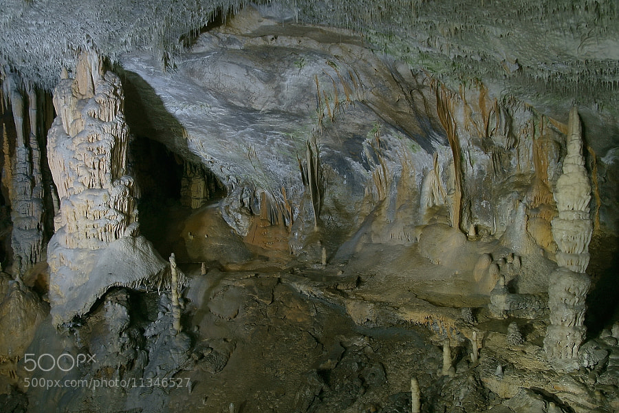 Photograph Postojna cave-2 by Branko Frelih on 500px