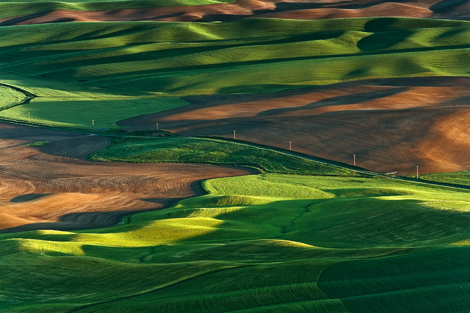 Photograph Lacy fields of Palouse by Gleb Tarro on 500px