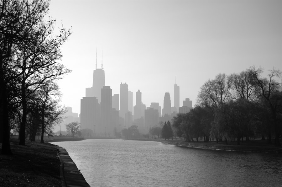 A view of the skyline from the Chicago River.