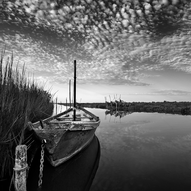 Photograph Black and White morning by Sarah Martinet on 500px