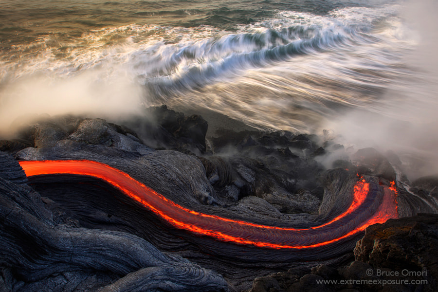 Sea Snake by Bruce Omori on 500px.com
