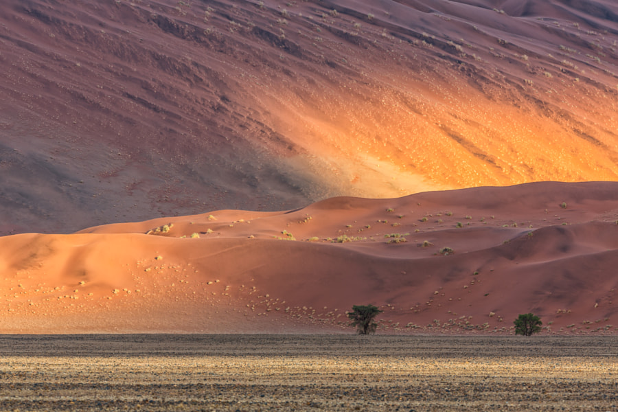 Sundown in Namib desert