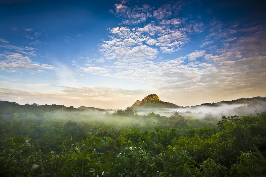 Photograph Misty Valley by Edy Santosa on 500px