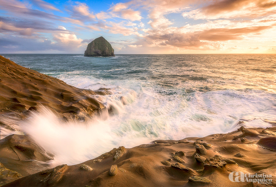 Golden by Christina Angquico on 500px.com