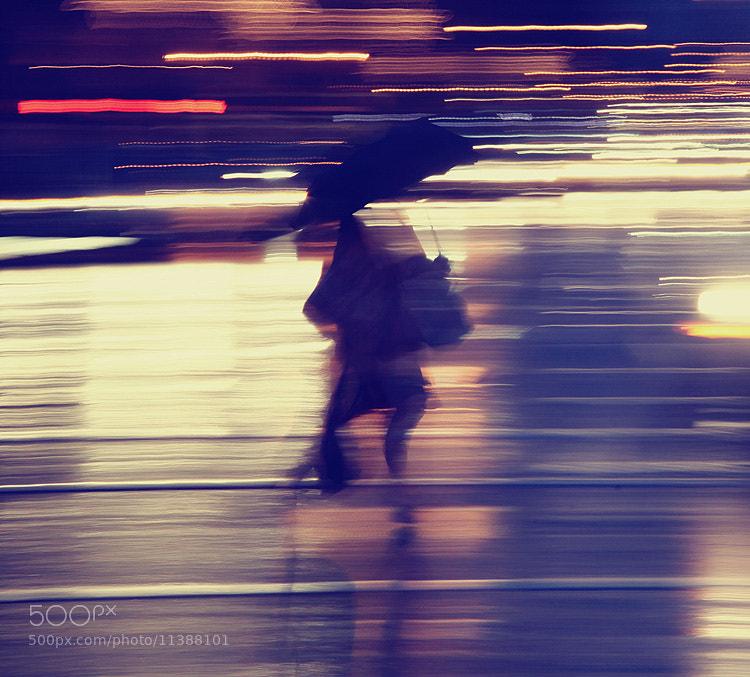 Photograph Rain Rhapsody III by Faisal Almalki on 500px