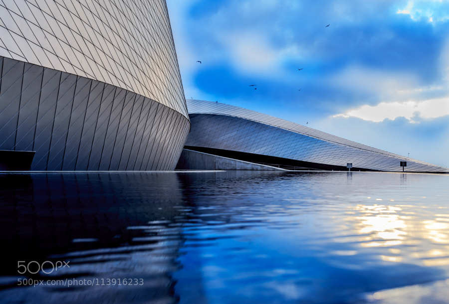 Blue water by blue planet by marinaaagaard edaccessible for Den marketing fish tanks