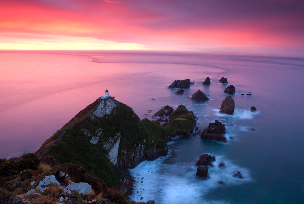 Photograph Nugget Point, Otago Coastline, New Zealand by Chocolate Dog  on 500px