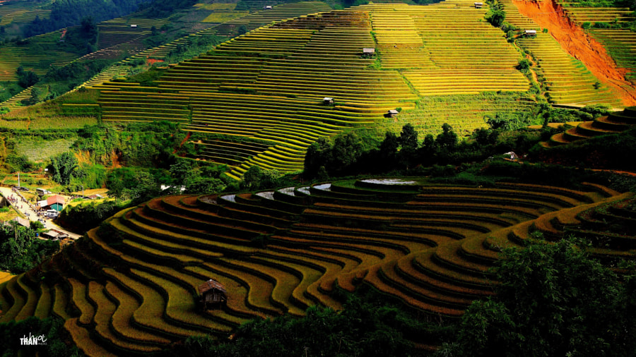 Welcome to Mu Cang Chai! by Khoi Tran Duc