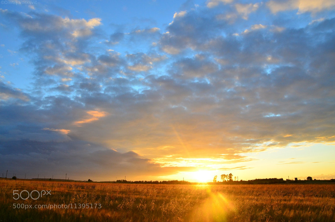 Photograph Sunset in country by Dmitry Voitkevich on 500px