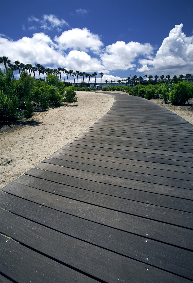 Photograph Boardwalk Pathway by Air Butchie on 500px
