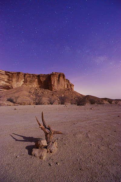 Photograph Night moon by Nasser  AlOthman on 500px