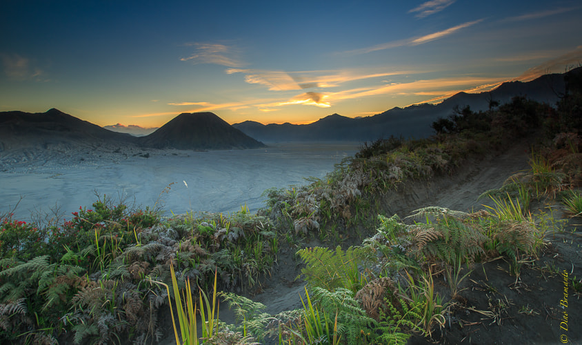 Photograph Sunset at Mountain Bromo by Dino Bramanto on 500px