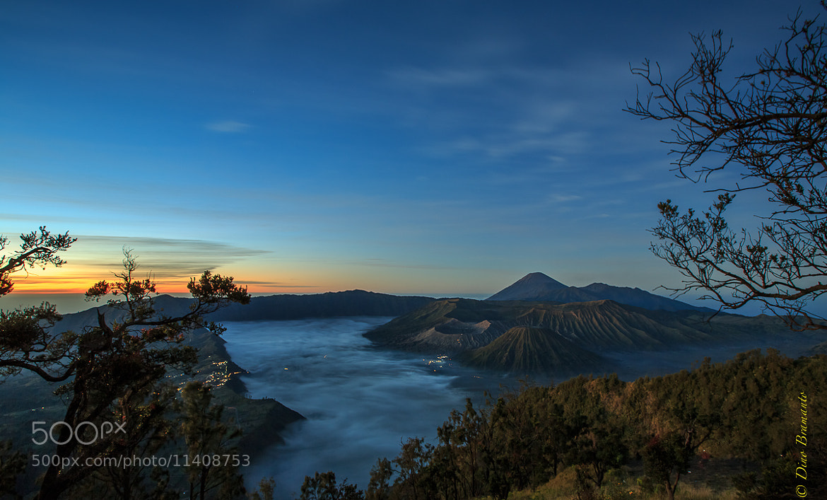 Photograph Misty Morning at Bromo by Dino Bramanto on 500px