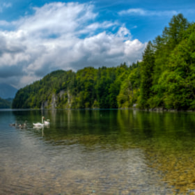 Alpsee by PHOTONPHOTOGRAPHY  - Viktor Lakics (PhotonPhotography)) on 500px.com
