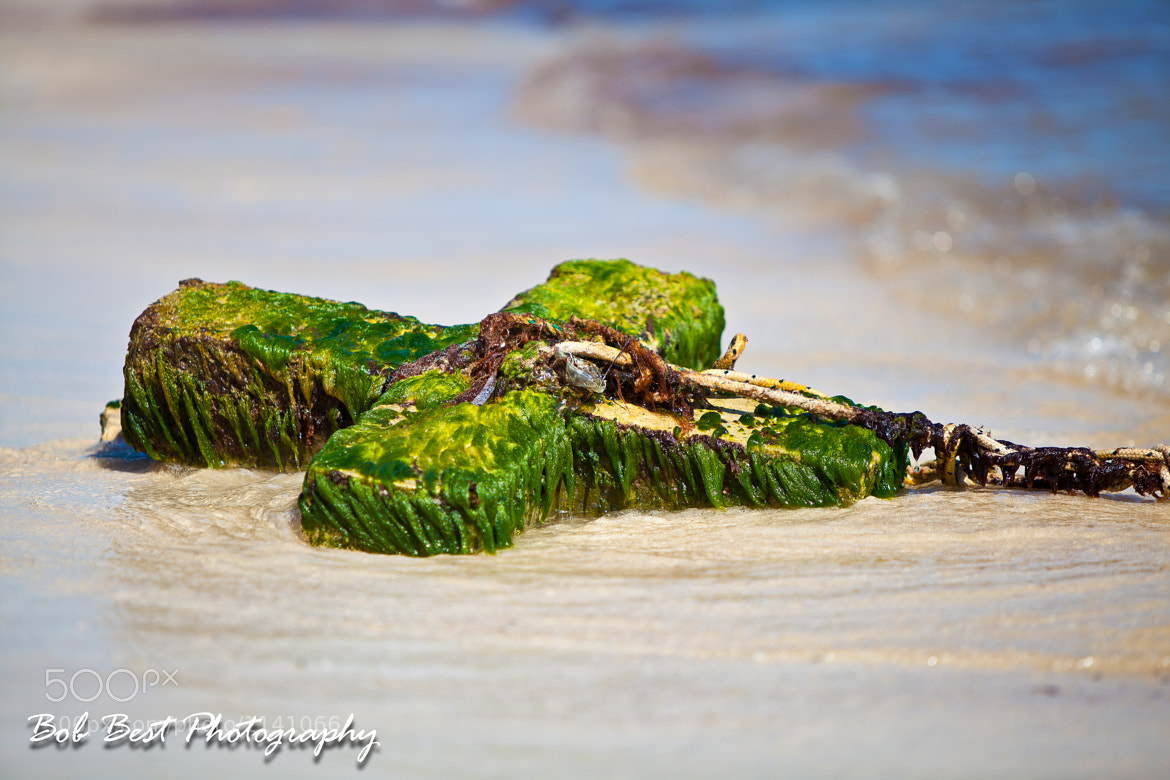 Photograph Green Anchor by Bob Best on 500px