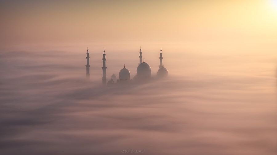When nature embraces architecture by Khalid Al Hammadi on 500px.com