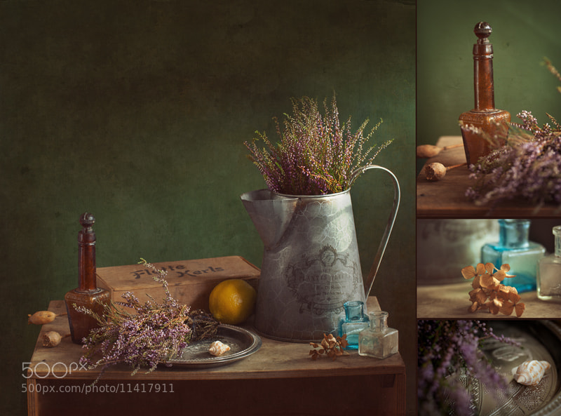Photograph heather evening (in details) by Yulia Pletinka on 500px