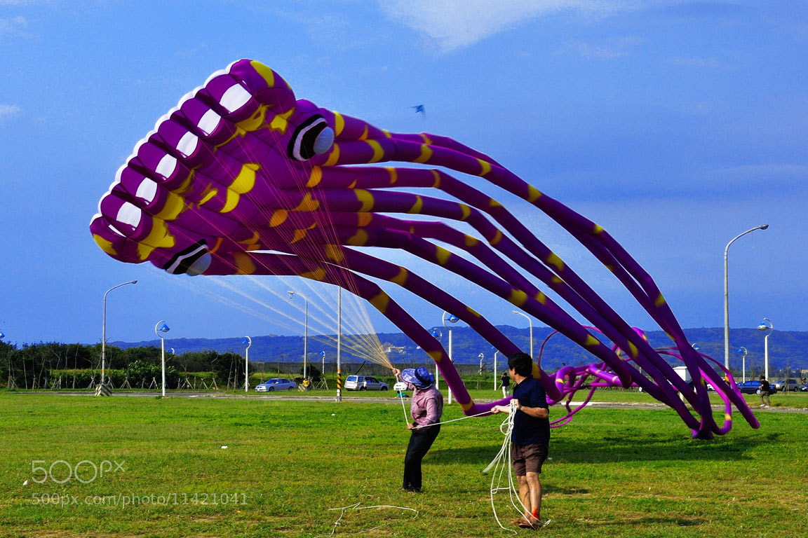 Photograph Fly a kite by lily su on 500px