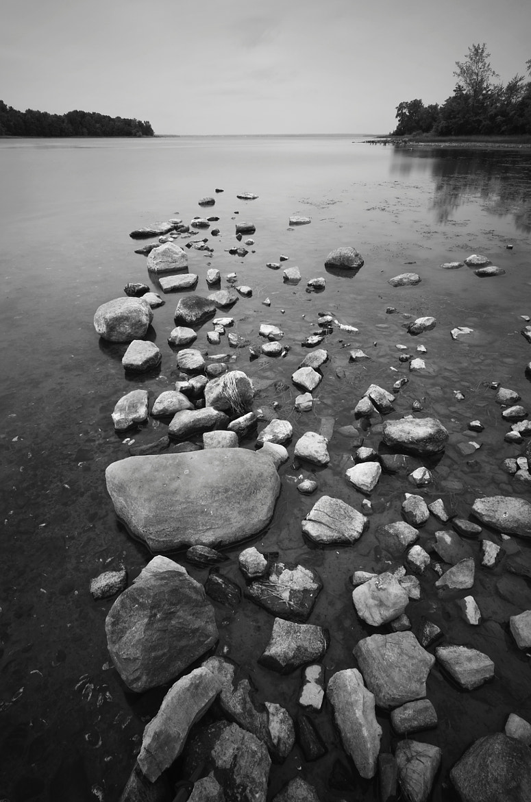 Photograph Stepping stones by Eduardo Barbosa on 500px