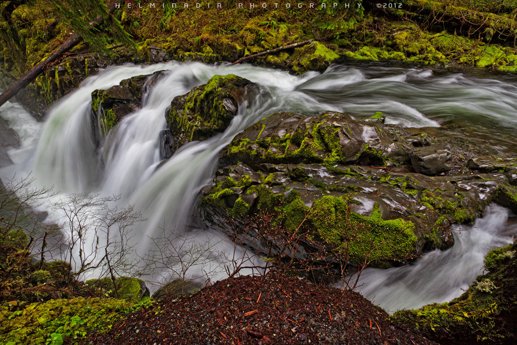 Photograph Sol Duc by Helminadia Ranford on 500px